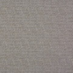 Logan Pumice Curtain Fabric