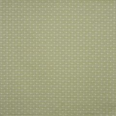 Pico Palm Curtain Fabric